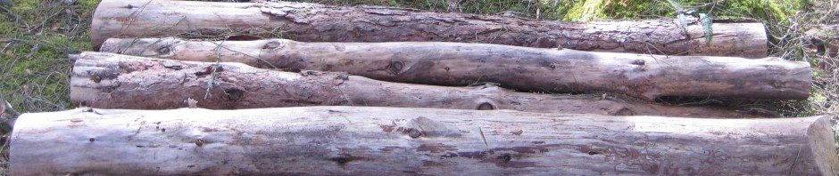 cropped-parall-logs-3